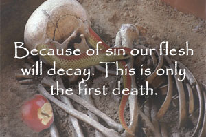 Death is decay.